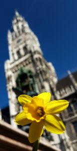 MunichNOW - Marienplatz Morning