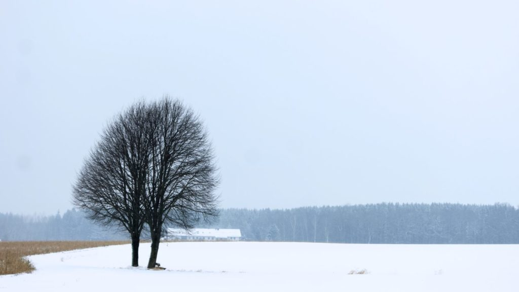 MunichNOW Munich Bavarian Countryside Winter Snow Cold